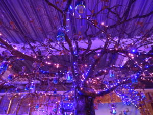 close up of wishing tree and lanterns