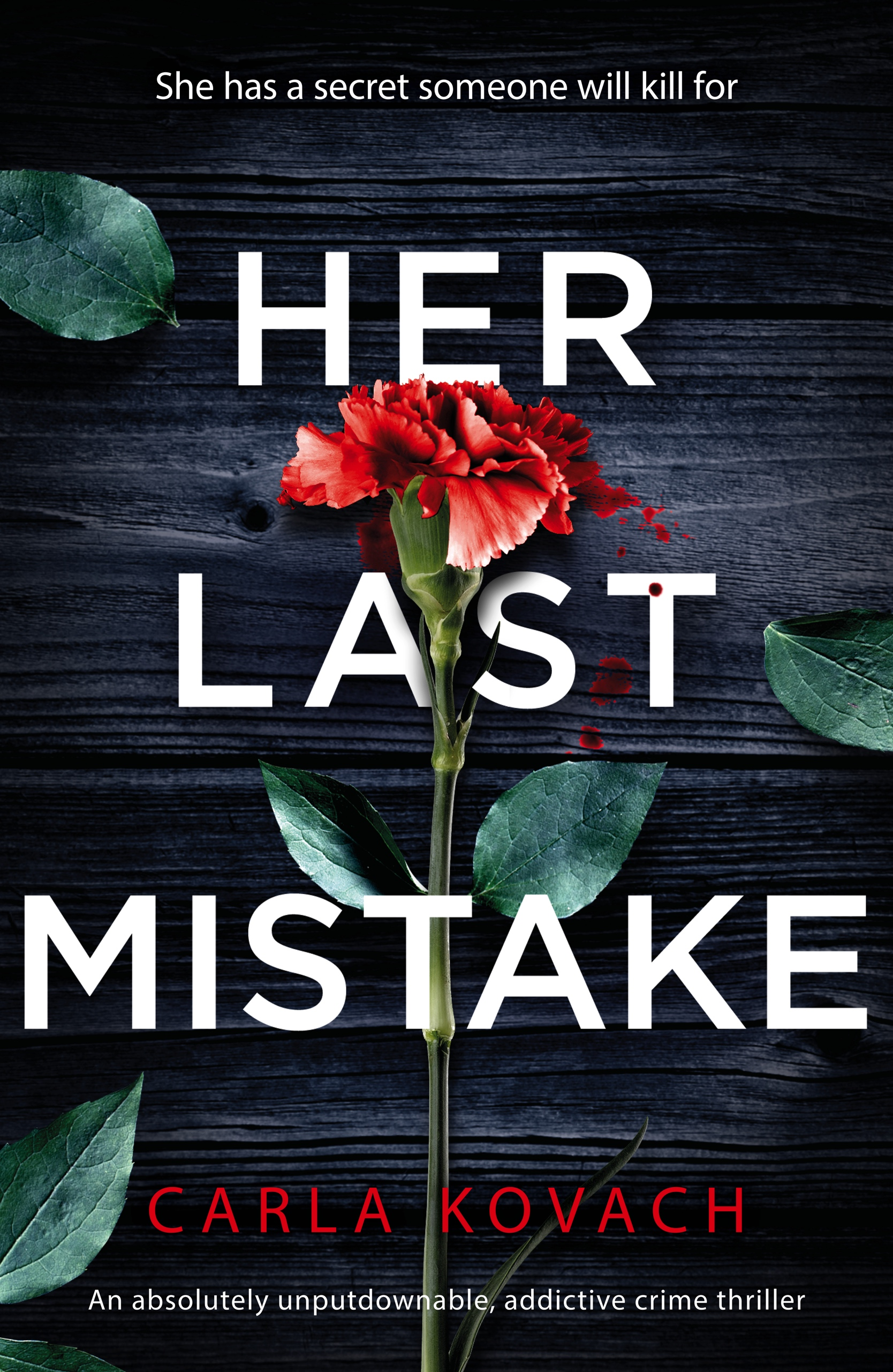 Her Last Mistake book cover