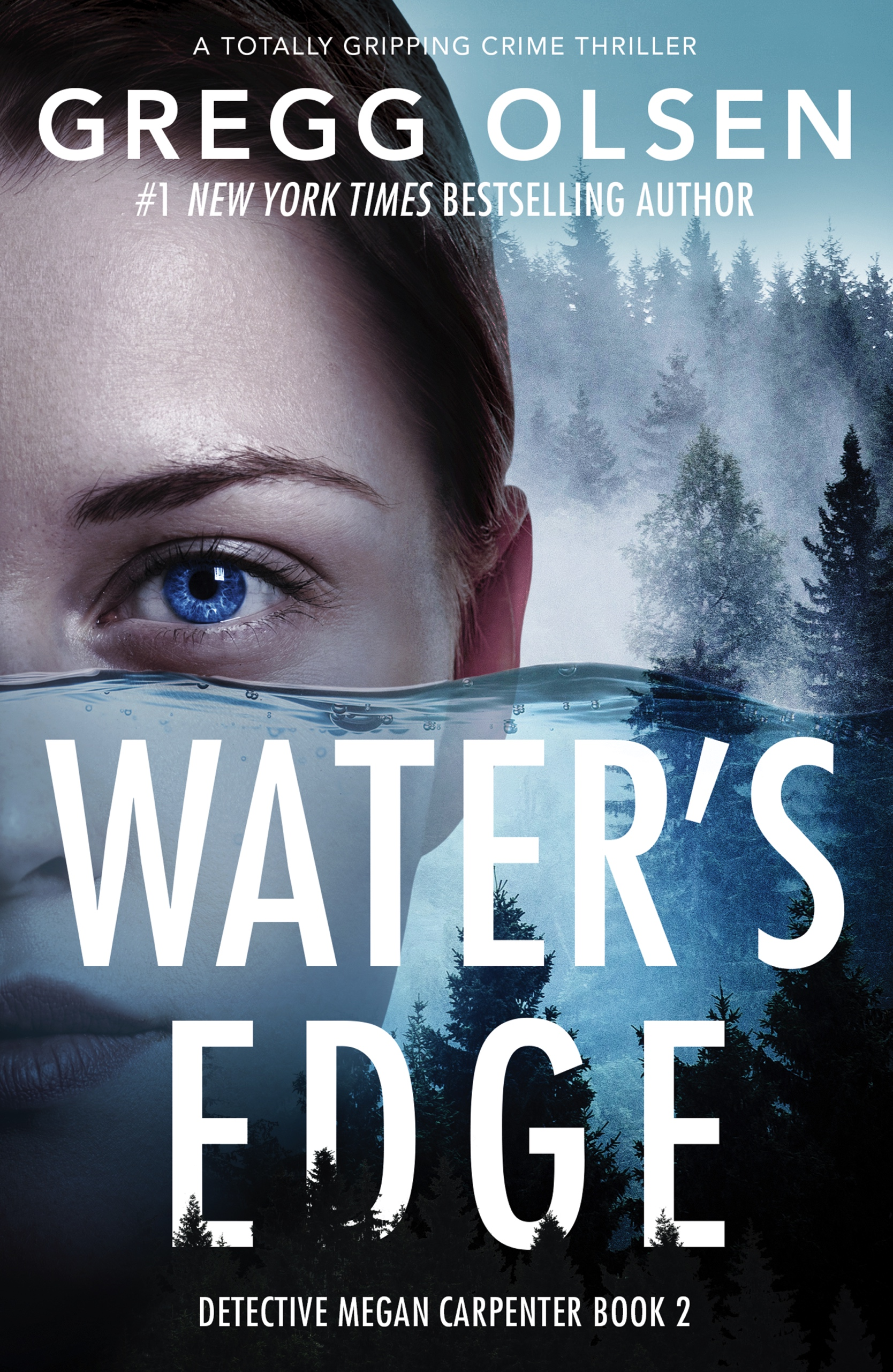 Water's Edge book cover