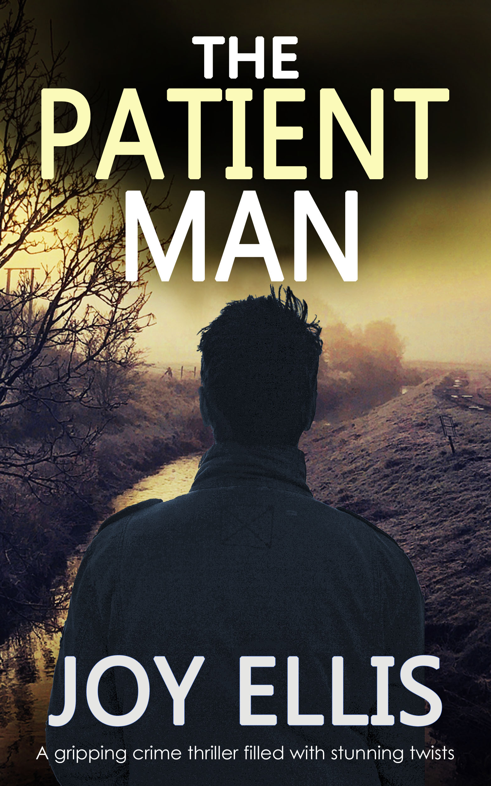 The Patient Man book cover