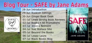 Safe book tour banner