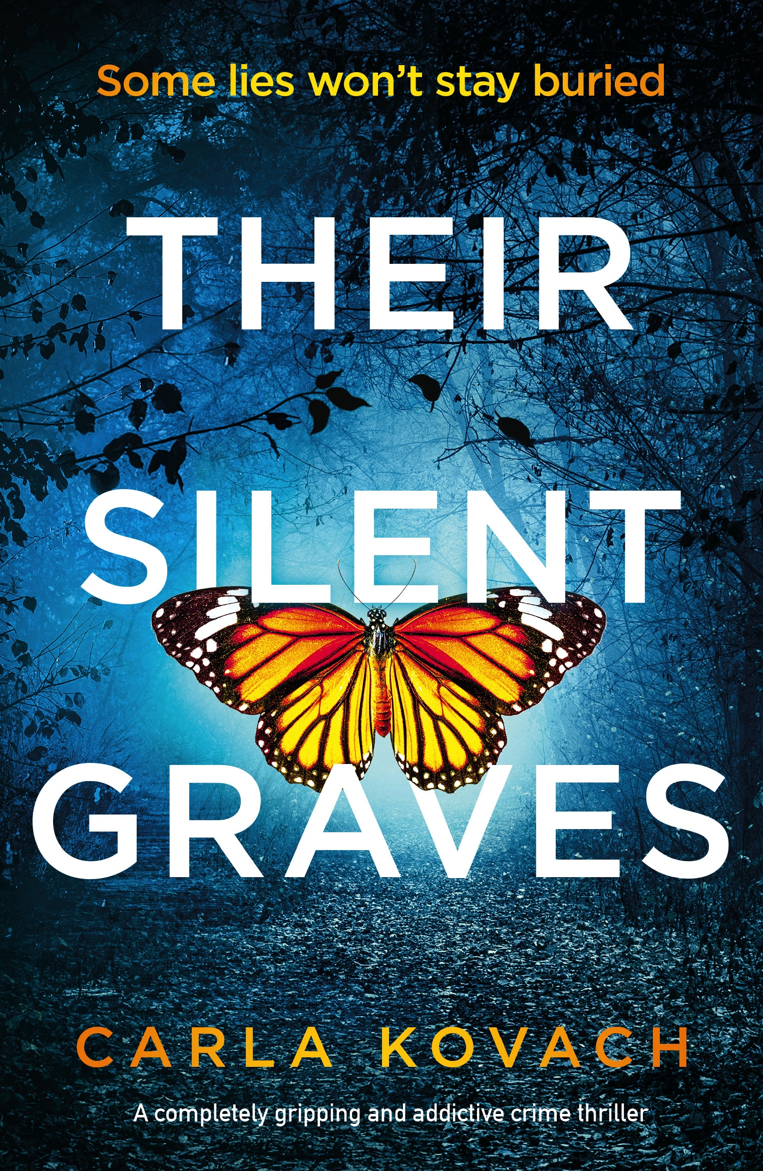 Their Silent Graves book cover