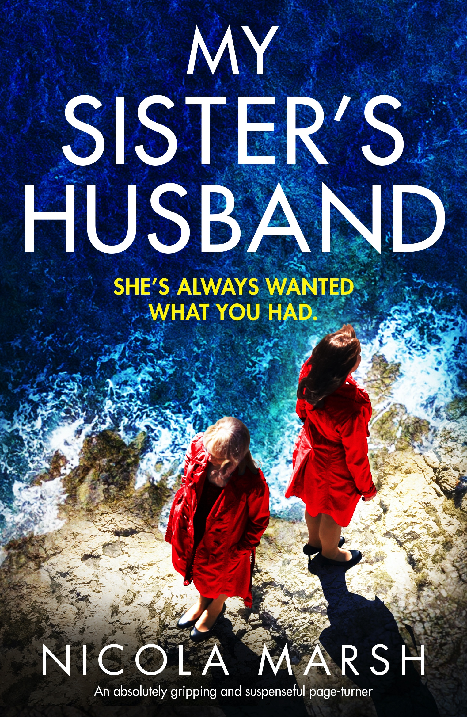 My Sister's Husband book cover