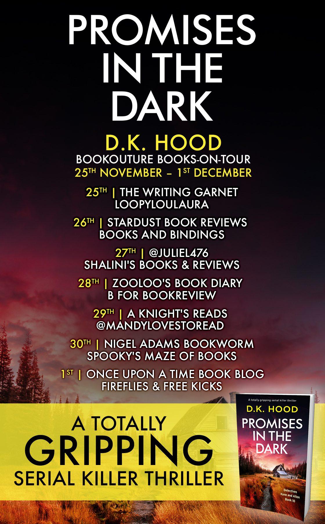Promises in the Dark blog tour banner