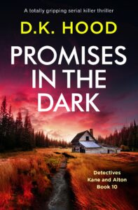 Promises in the Dark book cover