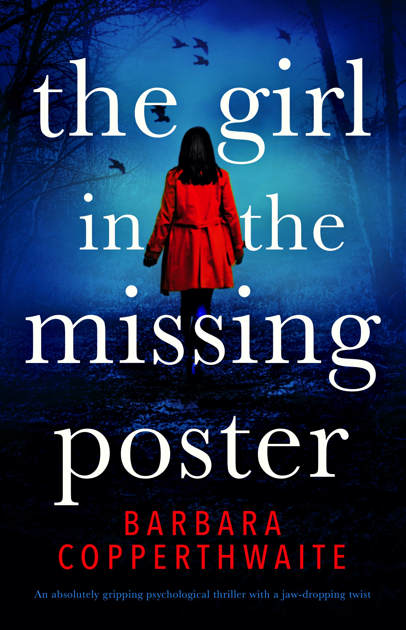 The Girl in the Missing Poster book cover