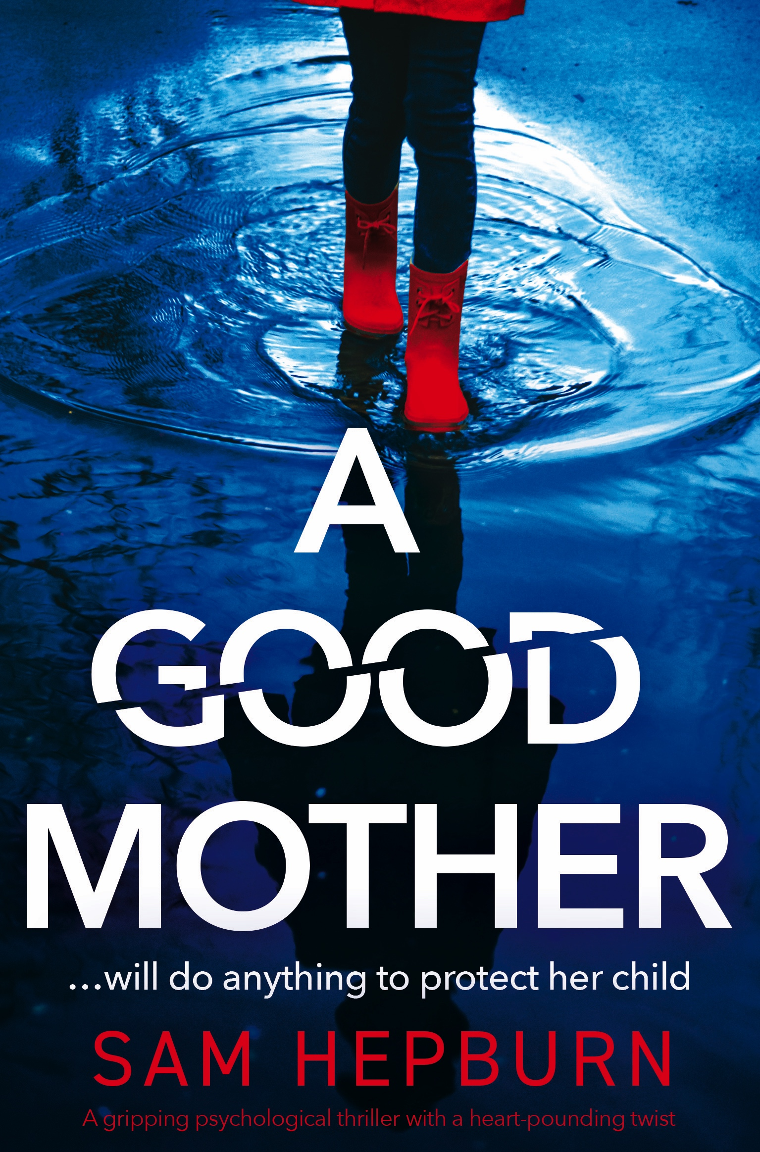 A Good Mother book cover