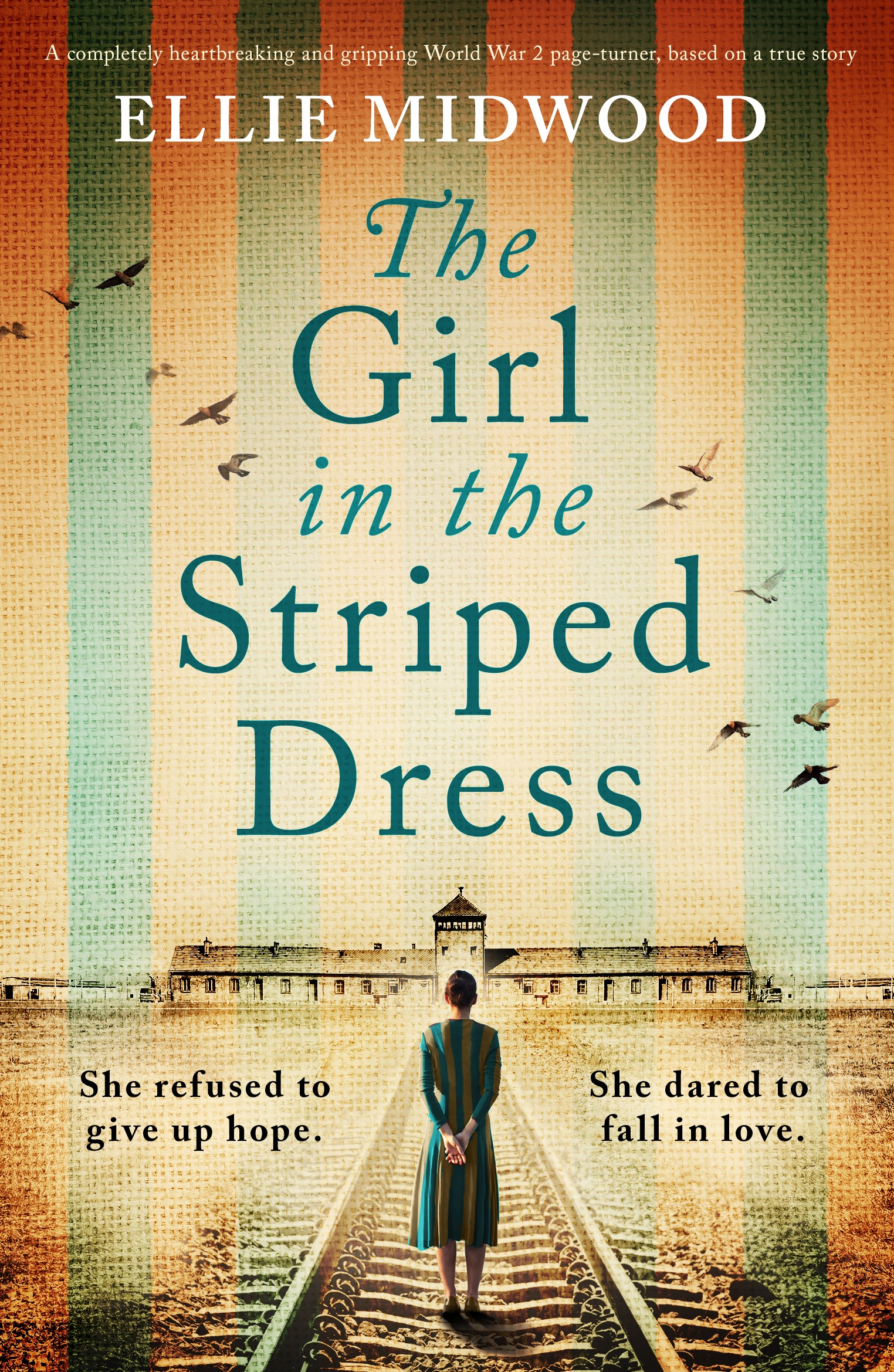 The Girl in the Striped Dress book cover